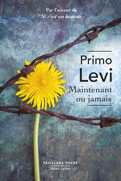 MAINTENANT OU JAMAIS - PAVILLONS POCHE