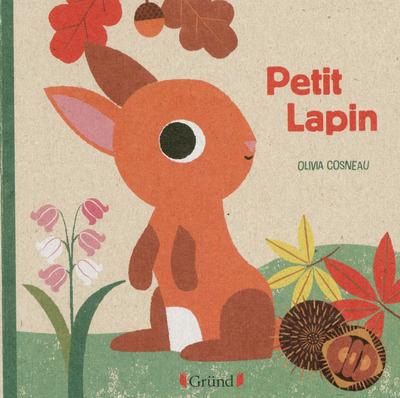 LIVRE NATURE PETIT LAPIN