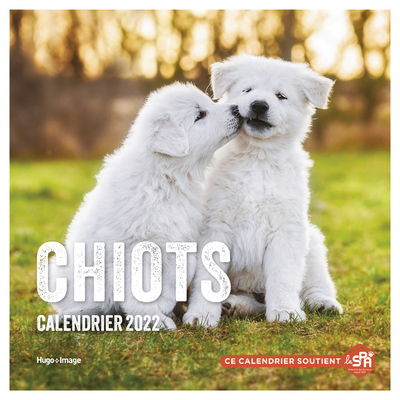 CALENDRIER MURAL CHIOTS 2022